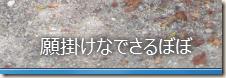 「キャプション」欄に入力した文字が表示されている