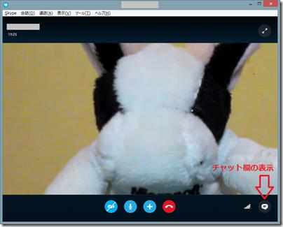 Skypeのビデオ通話